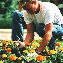 diventare giardiniere